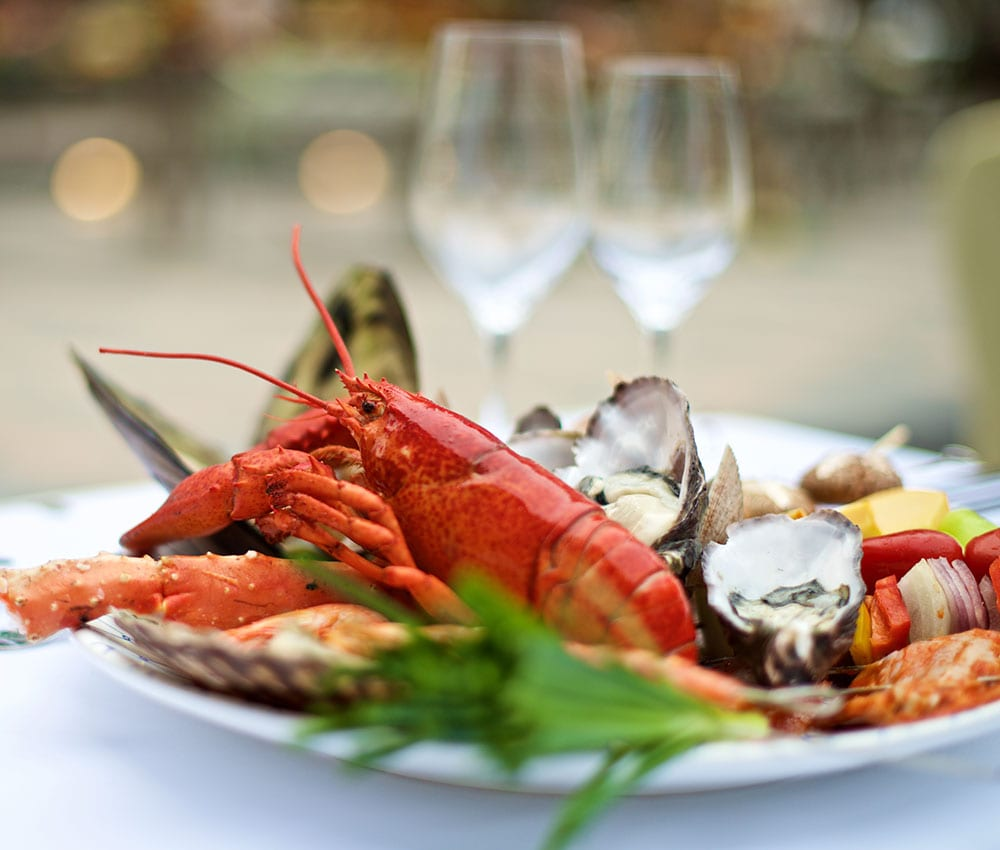 lobster_for_web